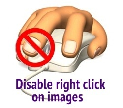 Prevent Image Theft - Disable Right Clicking on your website!